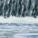 ODWODNIENIE – sama woda nic nie pomoże!
