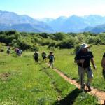 Nordic Walking angażuje aż 9o procent mięśni